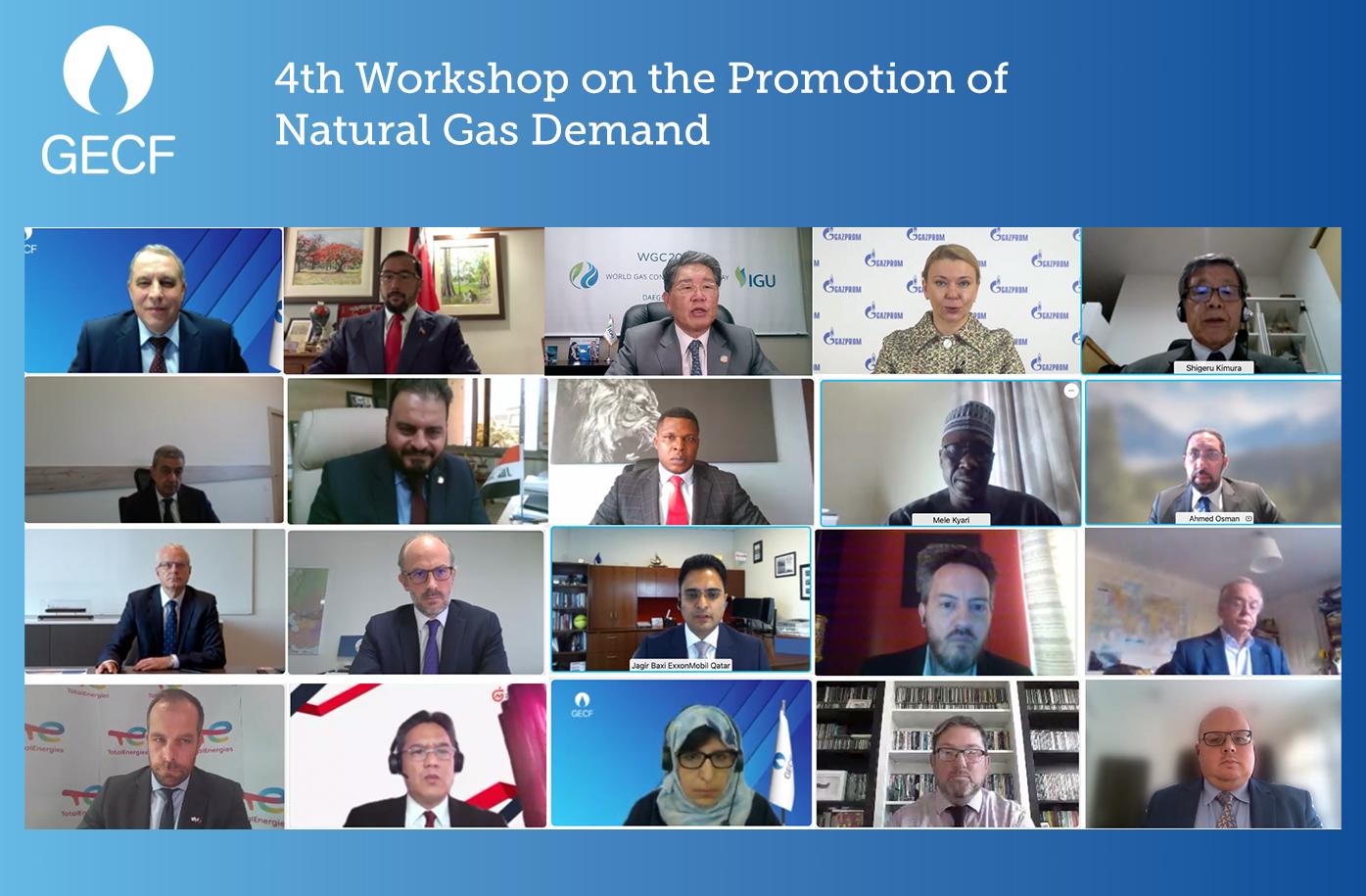 GECF Annual Workshop